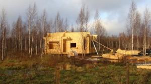 третий дом в Финской Деревне